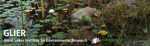 Great Lakes Institute for Environmental Research Publications