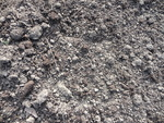 Detritus in Allotments' Soil