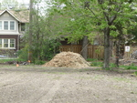 Wood Chips Donated by University of Windsor