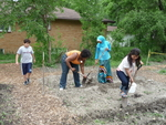 Young Women of W5 Building Potato Bed