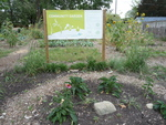 Signage and Native Bed