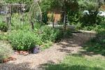 Garden44