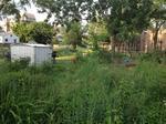Garden64