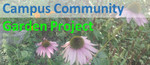 Campus Community Garden Project by University of Windsor